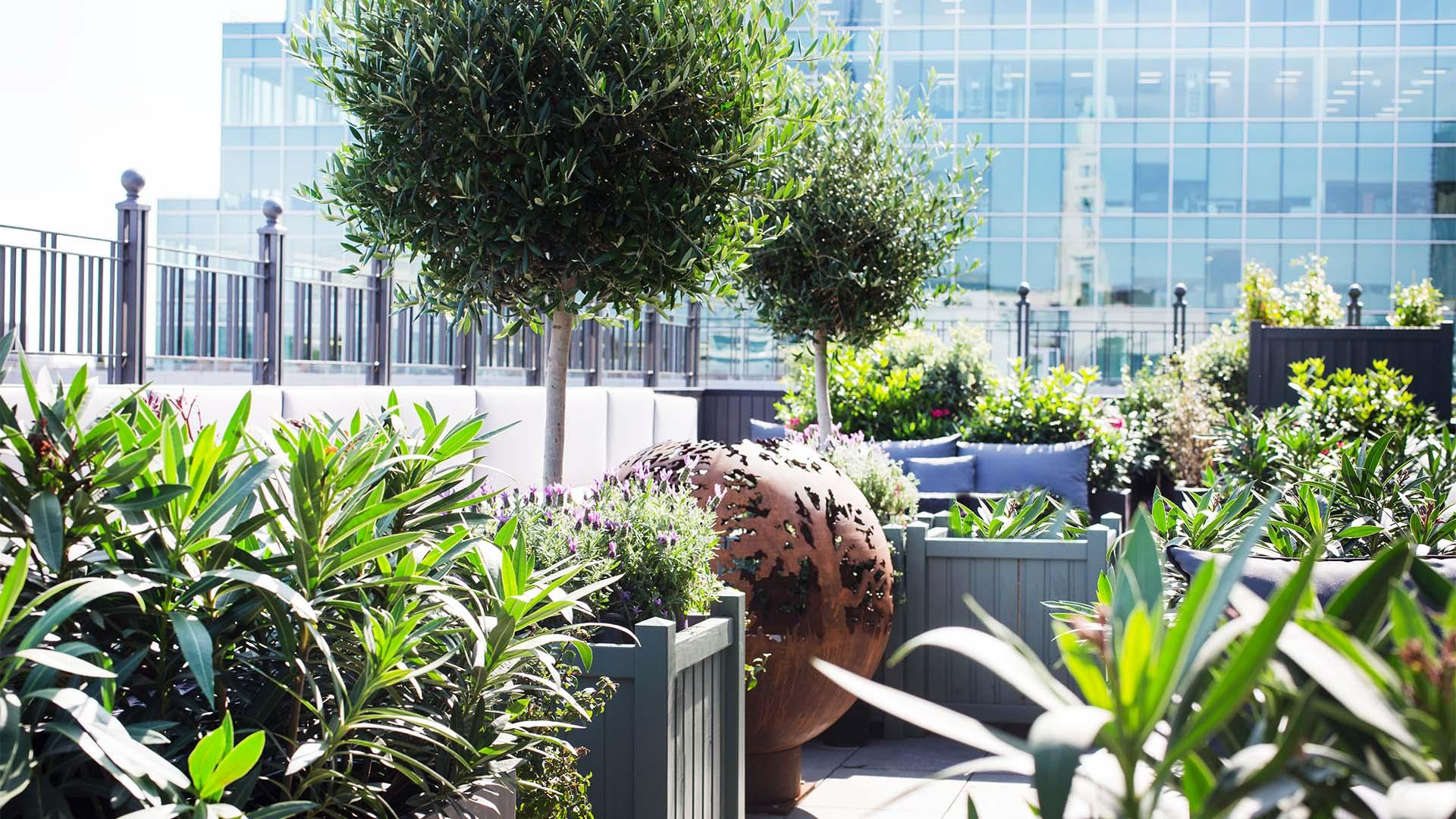 Eight Moorgate: the roof terrace