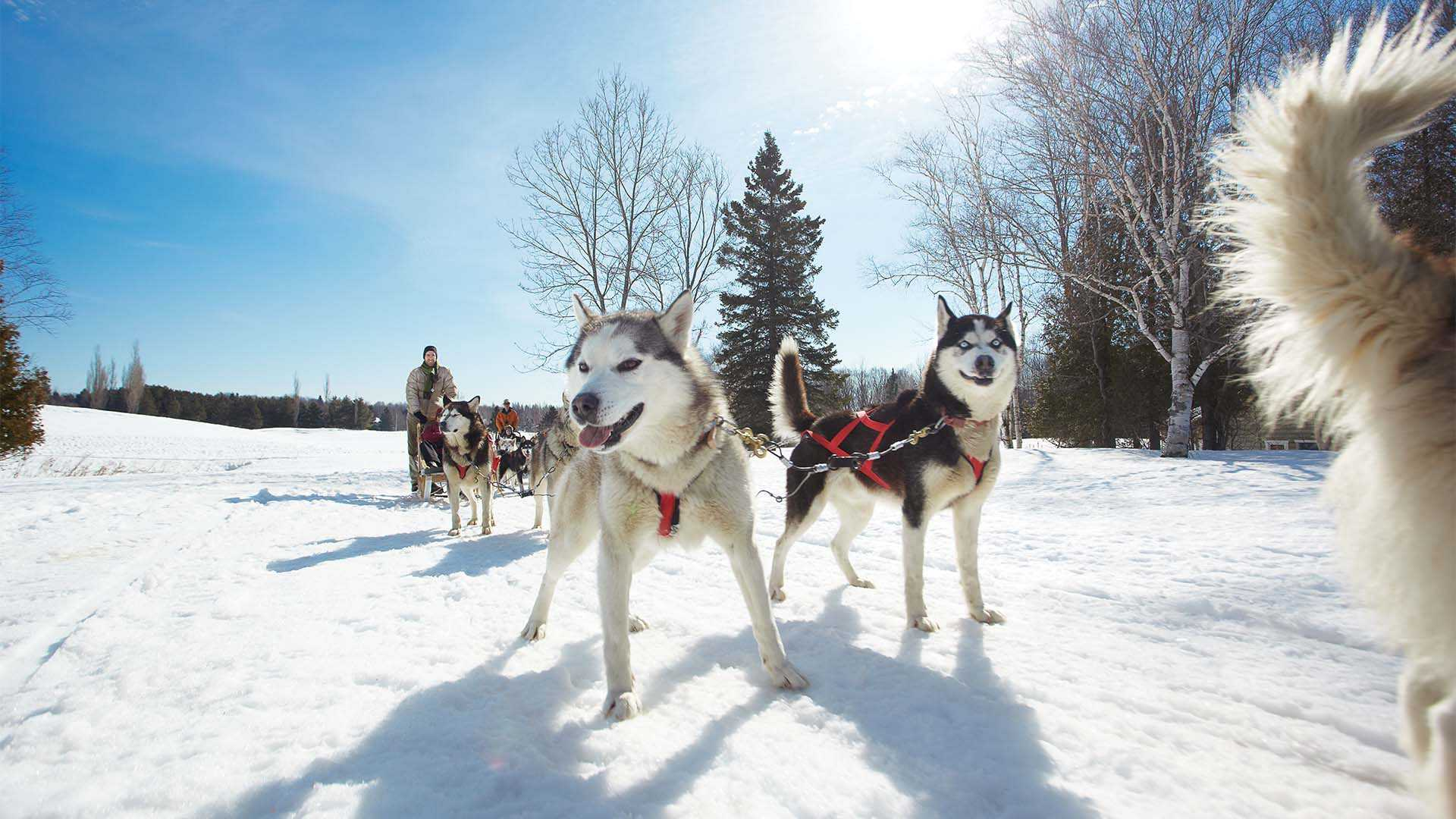 Quebec Travel Guide | What To Do In Quebec