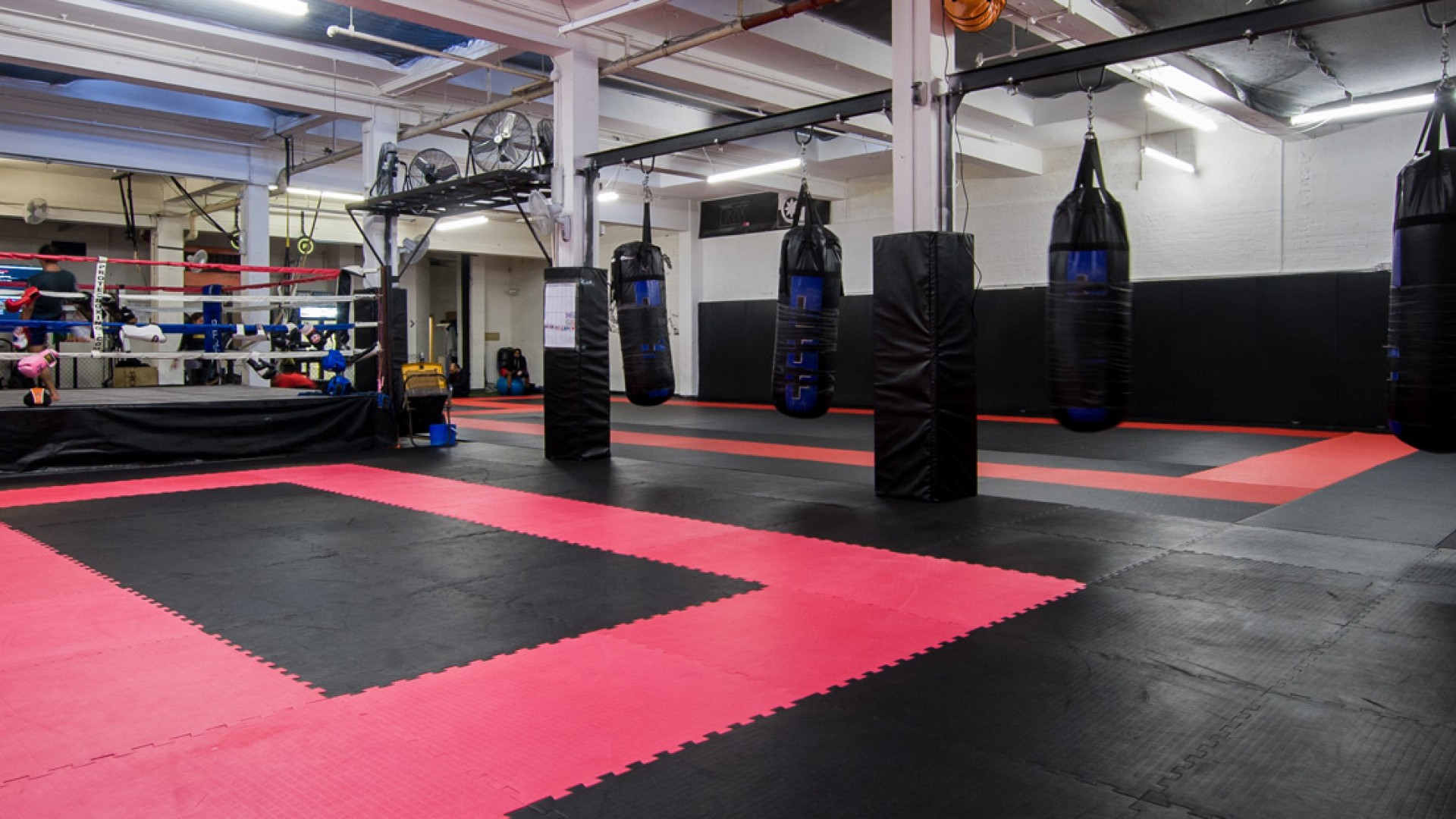 Fighting gym in houses do jiaq win