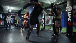 MMA Training and Fighting at Fight City Gym Mooregate London