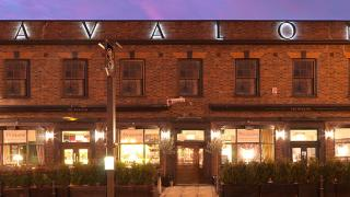 Best Pubs in Clapham: The Avalon