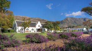 Steenberg Vineyards and Winery, South Africa