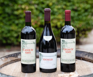 Best investment wines of 2019