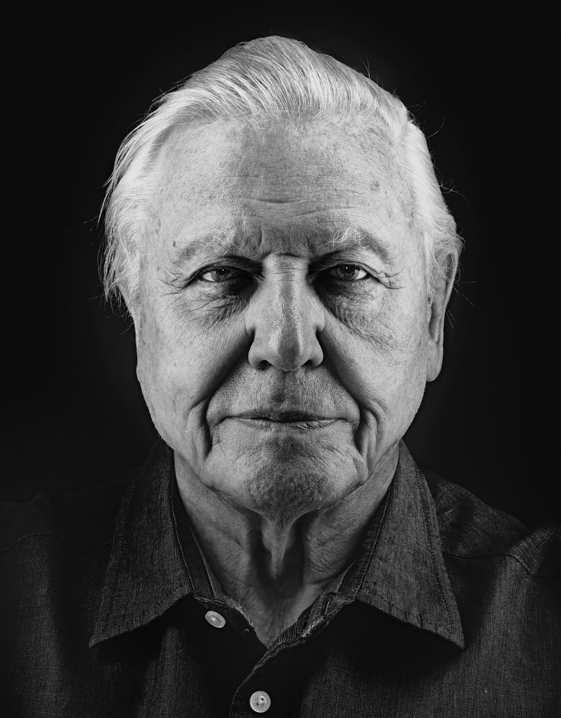 Nadav Kander – David Attenborough