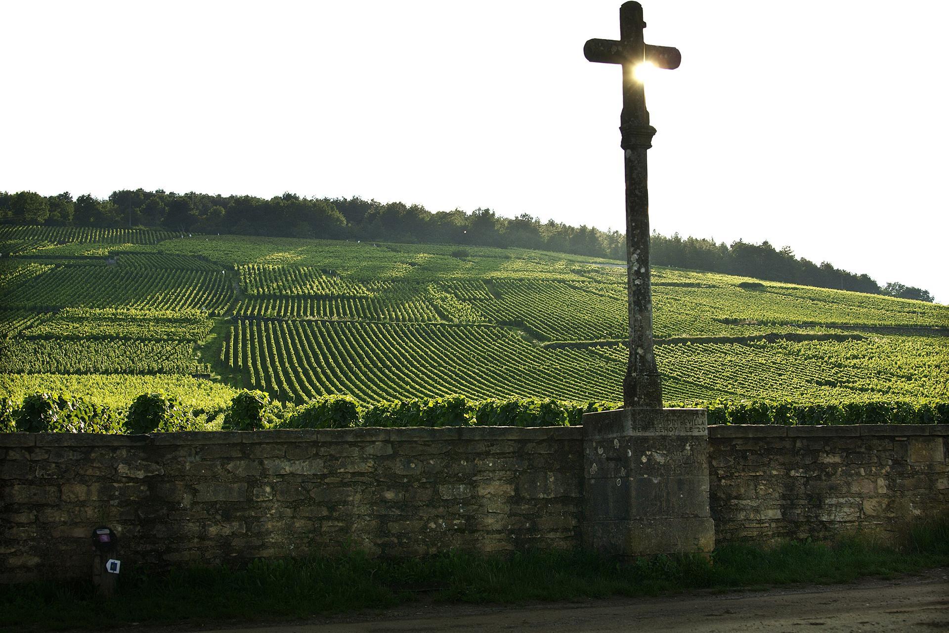 La Romanée-Conti, Burgundy's most prized vineyard