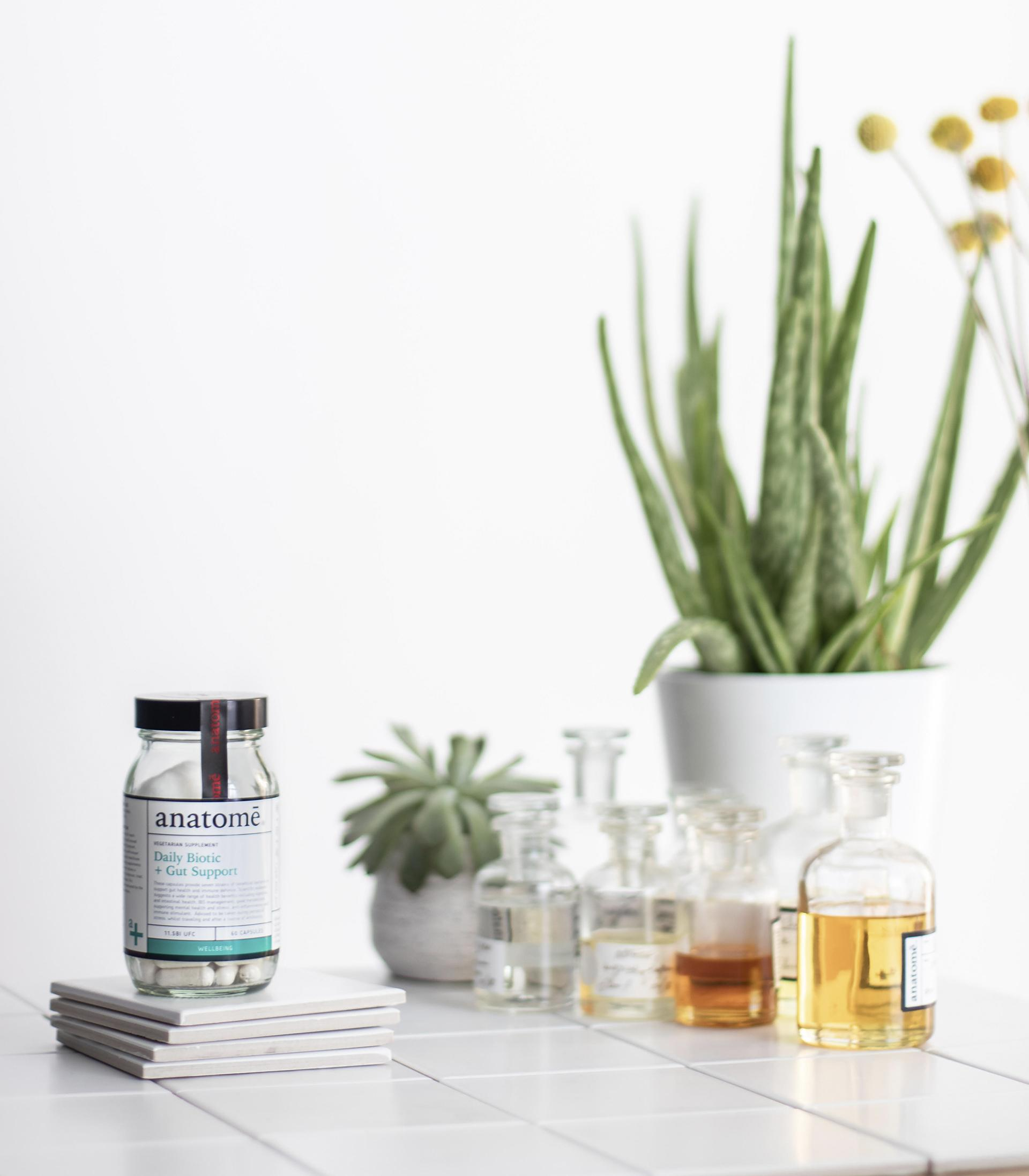Anatome Essential Daily Probiotic + Gut Support
