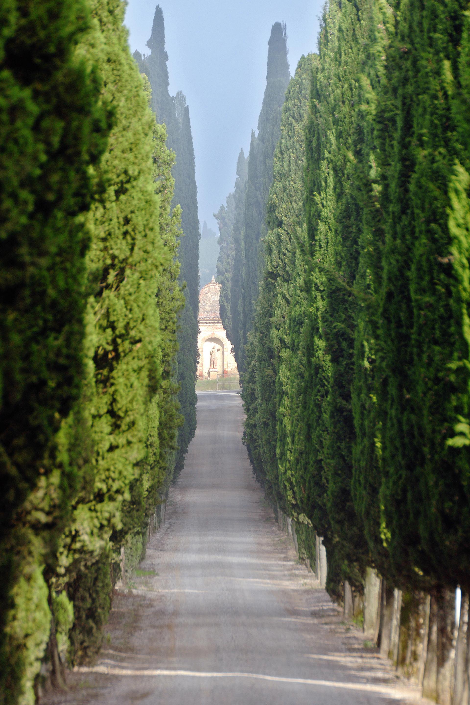 Arcanum, Italy