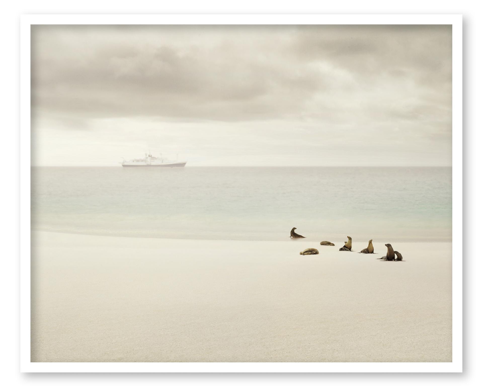 Enchanted Islands Las Encantadas by Andrea Hamilton