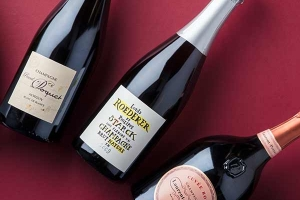Best Christmas champagne under £100